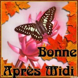 Bonne Après Midi !
